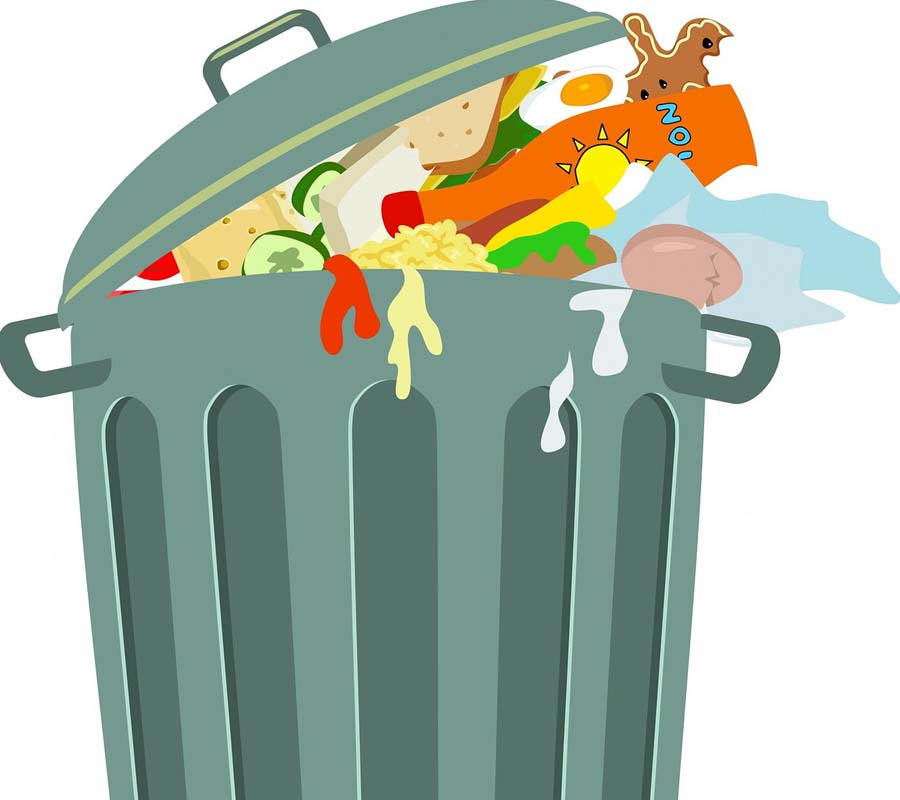 properly dispose the garbage in your kitchen to keep off the smell